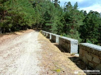 Garganta del Arroyo de Minguete - Puerto de Fuenfría;vacaciones singles madrid excursiones por la p
